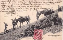 Suisse - Militaires Suisses - Armée - Artillerie De Montagne - Schweiz Militar - - Switzerland