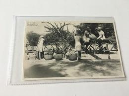 CF - 6 - HAITI - Jeunes Paysannes Après Le Marché - Postkaarten