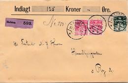 Dänemark: 1913: Wertbrief Hadsten Nach Ry - Dänemark