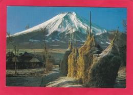 Modern Post Card Of Mount Fuji, Honshu, Japan.,L68. - Japan