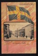 DE2976 - SWEDEN - GÖTENBORG - CARL JOHANSGATAN - STREET AND SWEDISH FLAG - Sweden