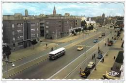 Carte Postale 59. Dunkerque  Bd Carnot  DS Autocar TOP  Trés Beau Plan - Dunkerque