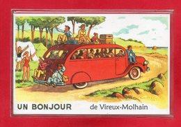 08-CPSM VIREUX - MOLHAIN - France