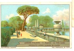"S1240- CHROMO LIEBIG - 1930 -  "" JARDINS ITALIENS "" : 6. BAGNAIA - Liebig"