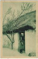 85   Les Plus Beaux Paysages De La Vendee  Maraichine  Nozais N°31 Le Toit De Chaume - France