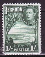 Bermuda George VI One Shilling Single Stamp From The 1938 Definitive Set. - Bermuda