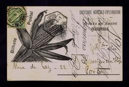 """WHEAT Portugal Publicitary Postcard """"QUINTA DE RANDE - FELGUEIRAS"""" Soc. Agricolo-Exploradora 1908 Gc4538 - Agriculture"""