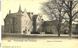 CPA - Belgique - Spa - Château De Nivezé-Farm - Spa