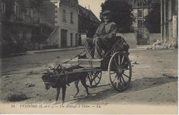 Vendome -  Voiture à Chiens - Taxis - Attelage - Vendome