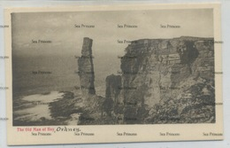 Orkney Postcard Kirkwall Old Man Of Hoy Rock Sandwick George Washington Wilson GWW - Orkney