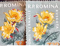Error Romania 1960, MI 1823 Flowers With Errors  Used - Variedades Y Curiosidades