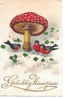 Champignon, Pilze, Funghi, Mushroom, Birds, Oiseaux, Vögel, Clover, Klee, Trèfle - Nouvel An