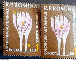 Error Romania 1960, MI 1818 Flowers With Errors  Used - Variedades Y Curiosidades