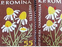 Error Romania 1960, MI 1816 Flowers With Errors  Used - Variedades Y Curiosidades