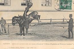 SAUMUR EMPLOI DU SAUTEUR DANS LES PILIERS - Saumur