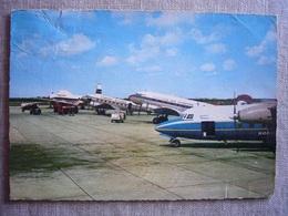 Avion / Airplane / SCHREINER AIRWAYS / Fokker F27 / MARTIN'S AIR CHARTER / DC-3 / CHANNEL AIRWAYS / DC-3 - 1946-....: Ere Moderne