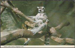 Lemur With Twins, Paignton Zoo, Devon, C.1970s - ETW Dennis Postcard - Animals