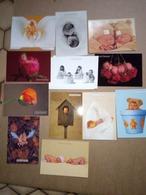 12 Cartes Postales De  Anne Geddes - Postcards