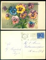 Nederland 1954 Felicitatiekaart - Holanda