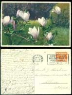 Nederland 1937 Felicitatiekaart - Unclassified
