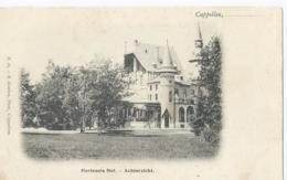 Kapellen - Cappellen - Hortensiahof - Achterzicht - N. 16 F. Hoelen, Phot. Cappellen - Kapellen