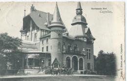 Kapellen - Cappellen - Hortensiahof - N. 991 F. Hoelen, Phot. Cappellen - 1905 - Kapellen