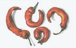 Postcard - Art - Wendy MacNaughton - Looks Like Sweet Red Pepper  - New - Postcards