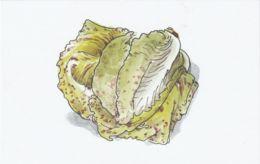 Postcard - Art - Wendy MacNaughton - Green Spotted Lettuce - New - Postcards