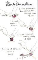 Postcard - Art - Wendy MacNaughton - How To Dice An Onion - New - Postcards