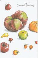 Postcard - Art - Wendy MacNaughton - Summer Tomatoes - New - Postcards