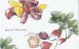 Postcard - Art - Wendy MacNaughton - Buried Treasure - New - Postcards