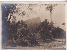 BRASIL. PHOTOGRAPHIE CIRCA 1920's. PHOTOGRAPHY FOTOGRAFIA  - LILHU - Orte