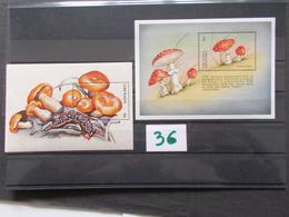 GRENADA / GRENADINNES    -  CHAMPIGNONS  2 Blocs Feuillets   Neuf XX Voir Photo ( 36 ) - Mushrooms