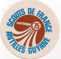 Autocollant SCOUTS DE FRANCE ANTILLES GUYANE - Aufkleber