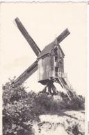 Keerbergen Le Vieux Moulin En Activité Oude Molen In Werking - Keerbergen