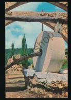 Ein Hod - Artist's Village [AA26-1.978 - Israel