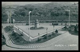 MURÇA - Jardim.   Carte Postale - Vila Real