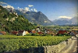 Vaduz - Furstentum - Liechtenstein - Formato Grande Non Viaggiata – E 14 - Suisse