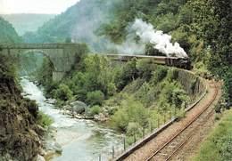 Train Chemin De Fer Du Vivarais Ligne Tournon Lamastre Les Gorges Du Doux Au Passage Des Etroits - Treni