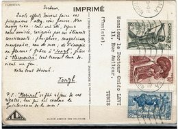 LCTN59/LE/2 - CAMEROUN CARTE POSTALE IONYL - Cameroun (1915-1959)