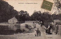 S50-030 Sauvage - La Passerelle Du Mazeau - Autres Communes