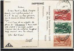 LCTN59/LE/2 - CAMEROUN CARTE POSTALE IONYL JANVIER 1950 - Cameroun (1915-1959)