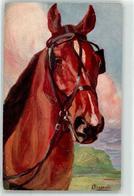53106264 - Pferd Mit Scheuklappen - Caballos