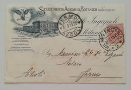 Cartolina Postale Stabilimento Agrario Botanico Fratelli Ingegnoli Milano - 02/09/1913 PERFIN - 1900-44 Vittorio Emanuele III