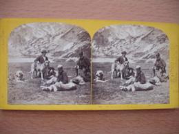 Photo Stereo Montagne  Chien Promeneur - Stereoscopio