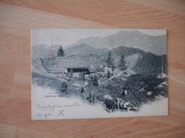 Sortie Chalet Paturage  Valais Suisse - VS Wallis
