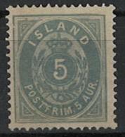 Iceland Island 1876. Mi 6A, Unused Without Gum (*) - Neufs