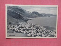 Fjarrekstur  Iceland      Ref 3767 - Iceland