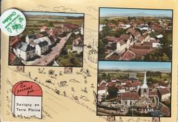 89 - Carte Postale Semi Moderne De   SAVIGNY EN TERRE PLEINE    Multi Vues - Other Municipalities