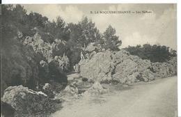 LA ROQUEBRUSSANNE   ( VAR )  LES NEFFONS - La Roquebrussanne
